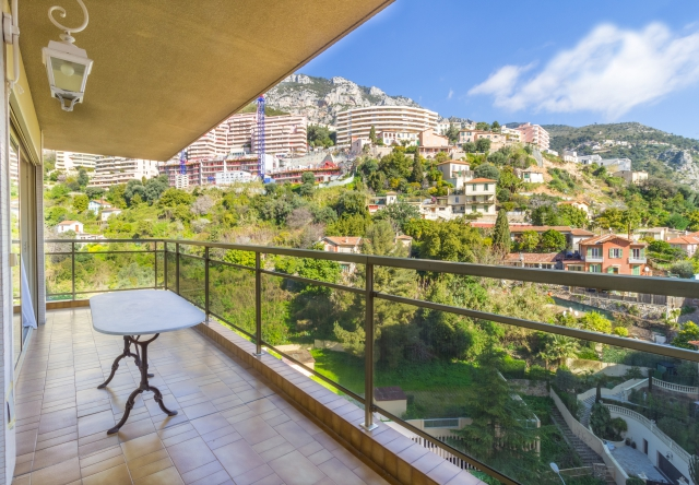 2 bedroomed apartment - view onthe city and monta